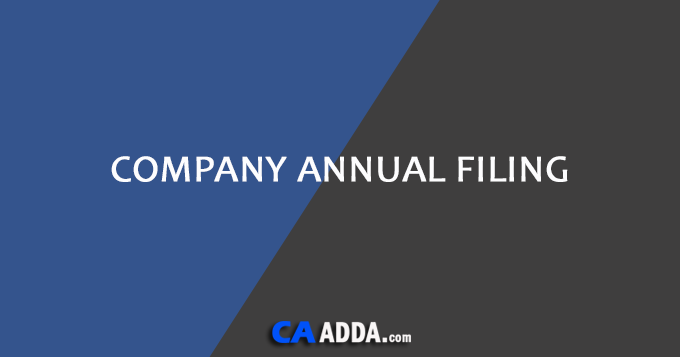Company Annual Filing